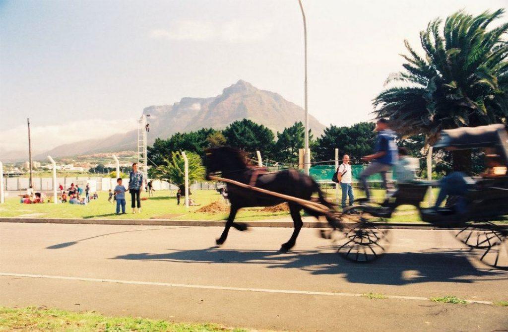 oude-molen-carriage-rides