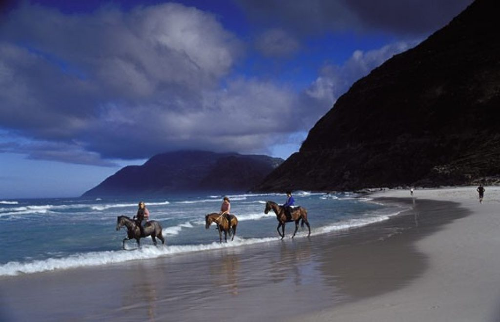 beach-horse-riding-at-the-dunes