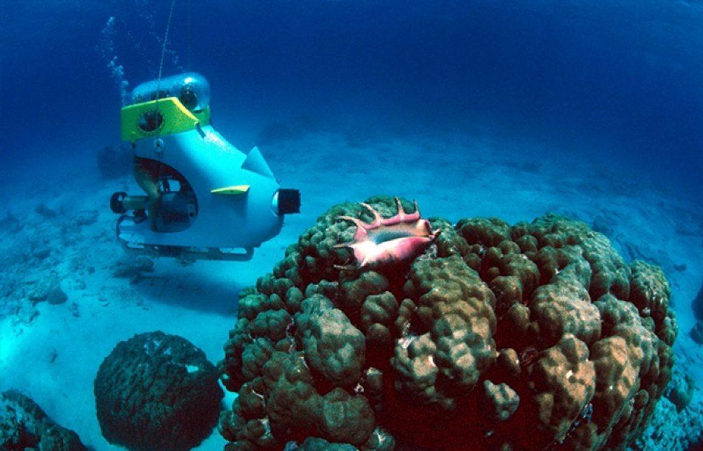 underwater activity in mauritius