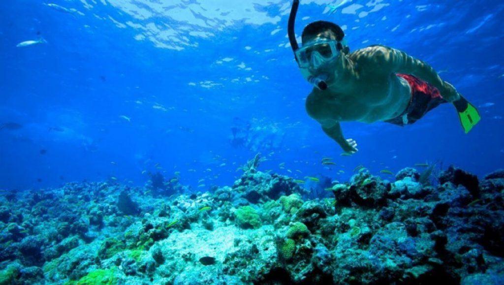 snorkeling in blue bay
