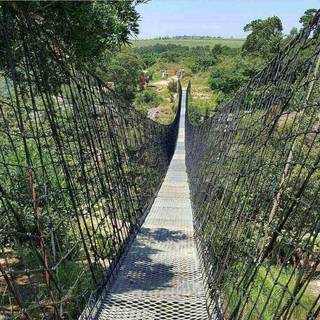 suspension-bridge-oribi-gorge