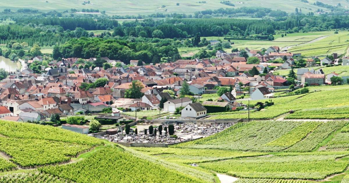Champagne Region Tour from Paris with Wine Tastings