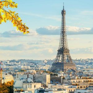 Eiffel Tower from a distance with yellow leaves in the foreground