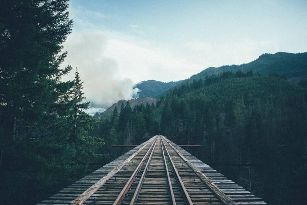 Puffing Billy's famous Trestle Bridge