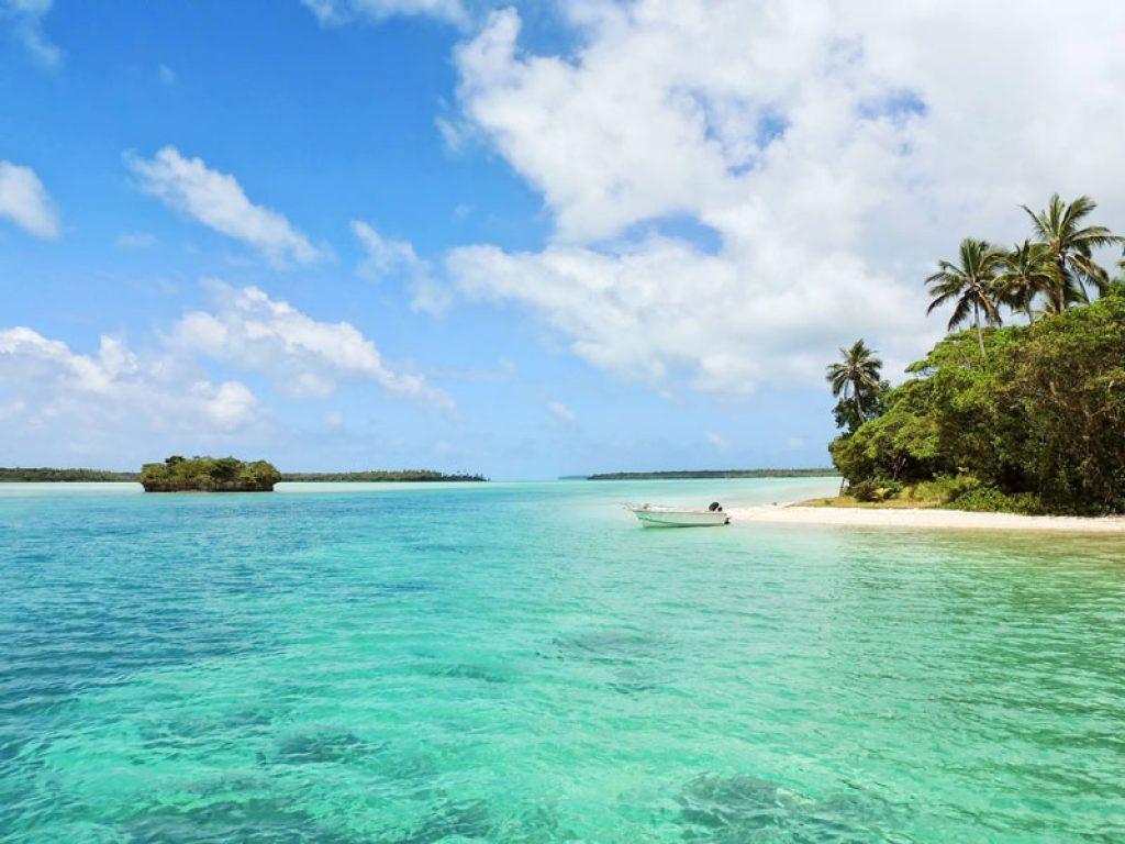 tour in jamaica