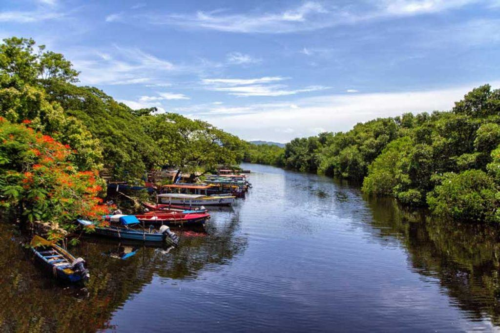 discover excursions in jamaica