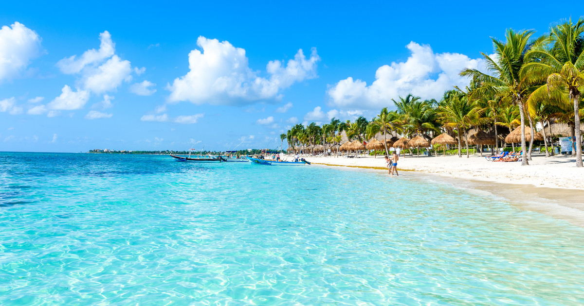 Cancun: Dinner and Dancing Nightlife Package