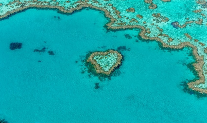 Heart-shaped reef along the coast of Whitehaven beach