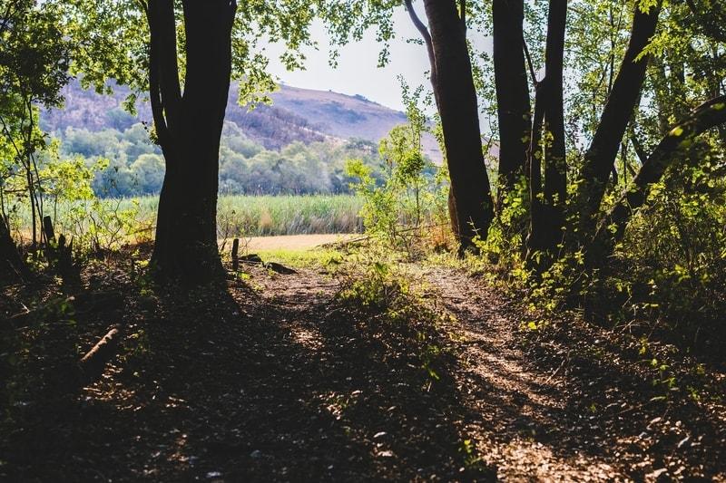Hiking trail in Mpumalanga