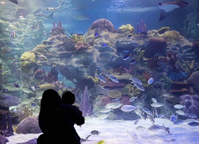 Mother and child at aquarium