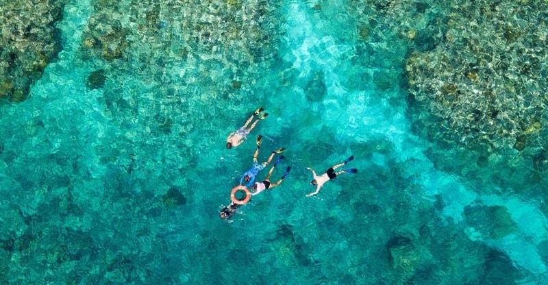 Premium Snorkeling