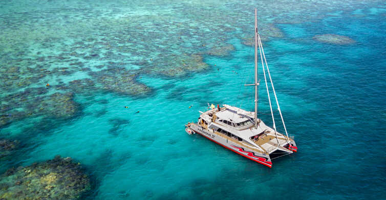 From Cairns: Great Barrier Reef Cruise by Premium Catamaran