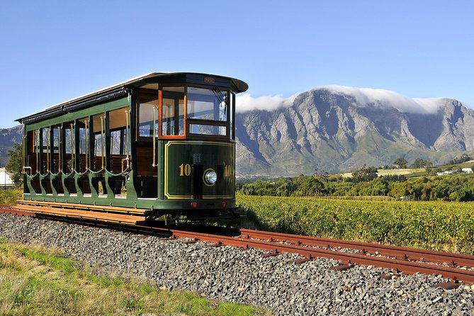 Full-Day Stellenbosch, Franschhoek and Paarl Wine Tasting Tour from Cape Town