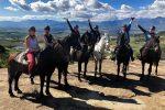 1,5 Hour Horse Trail