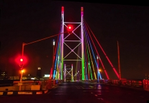 Exciting Things to do in Gauteng