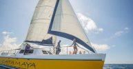 4-Hour Luxury Catamaran Cruise from Puerto Aventuras