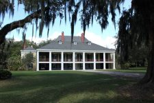 Swamp and Plantation Tour New Orleans