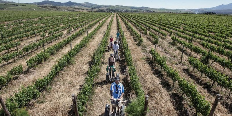 Spier Vineyard Segway Tours