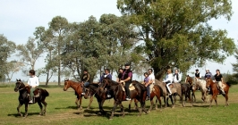 Buenos Aires Gaucho Day Trip (Group & Private)