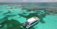 Cancun or Riviera Maya: Isla Contoy & Isla Mujeres Day...