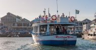 Cape Town: 30 Minute Harbour Boat Cruise with Seal Watching