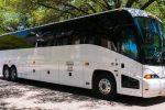 Cape Town Safaris (Bus)