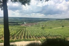 Champagne Tour From Paris (Classic and by E-bike)