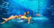 Dubai: Atlantis Aquaventure & Lost Chambers Aquarium Ticket