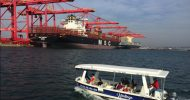 Durban: 1-Hour Harbor Boat Cruise
