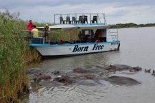 Boat Cruise Durban (Gondola Rides & St Lucia Tours)