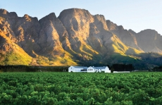 Franschhoek Wine Tasting Tours, Activities & Tram – (21 Deals on Special)