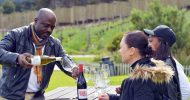 From Cape Town: Cape Winelands Full-Day Private Tour