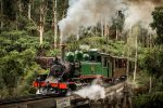 Healesville Sanctuary and Puffing Billy Steam Train Day Trip from...