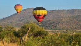 Hot Air Balloon Ride in Johannesburg