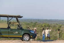 Kruger National Park Full Day Game Drives