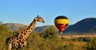 Pilanesberg, Sun City and Valley of the Waves Waterpark
