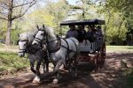 Private GAUCHO TOUR - FULL DAY TRIP Guided in EN,...