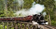 Puffing Billy Steam Train & Wine Country Day Tour