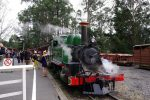 Puffing Billy Train With Optional Penguin Parade or Melbourne City...