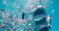 Solar Undersea Walk
