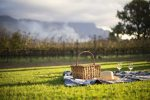 Stellenbosch, Franschhoek and Paarl Wine Tasting Private Tour from Cape...