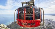 Table Mountain, Penguin Colony & Cape Point Shared Tour